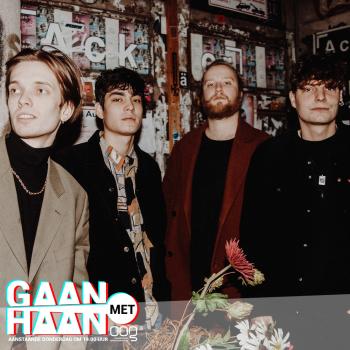 Gaan Met Haan: The Vices